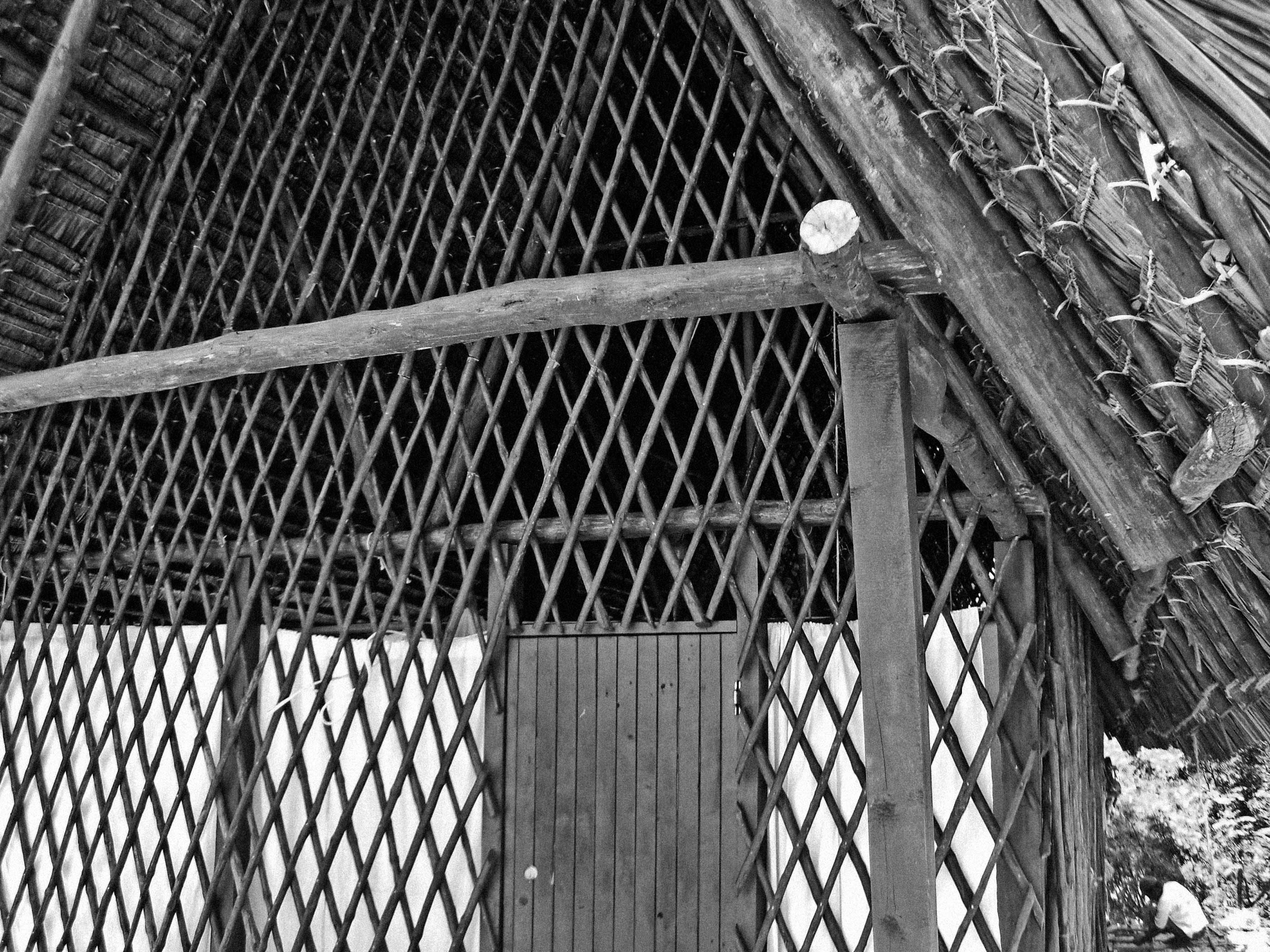Wooden-House-3_bw